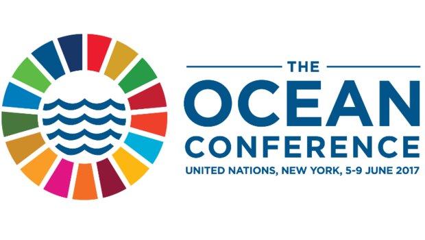 UN agencies commit to cutting harmful fishing subsidies