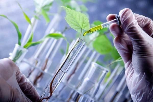 لیزینگ محصولات زیستفناوری کشاورزی