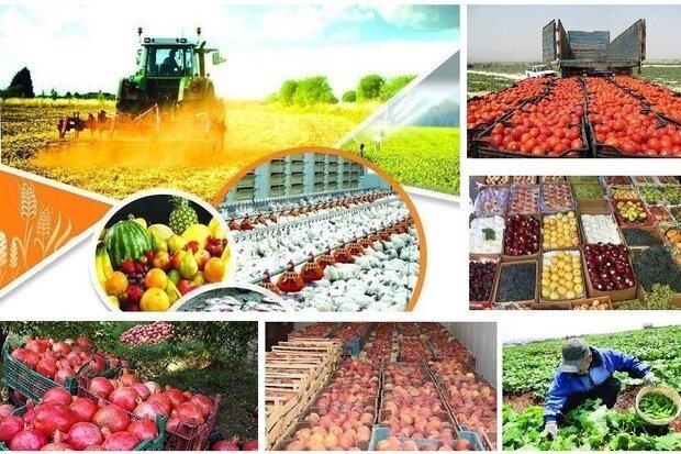 تولیدات کشاورزی