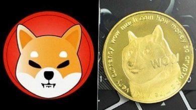تفاوت های شیبا و دوج کوین دو ارز دیجیتال