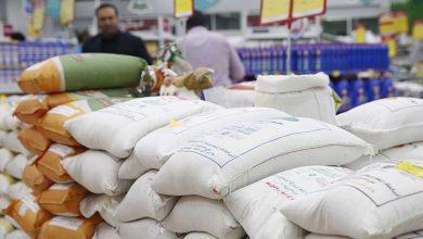 چرا قیمت برنج گران شد؟