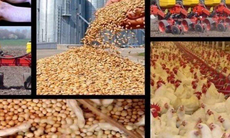 واردات ۵ کالای اساسی ۵۳ درصد کاهش یافت